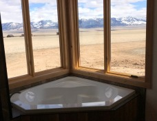 Master Bath Tub with a View
